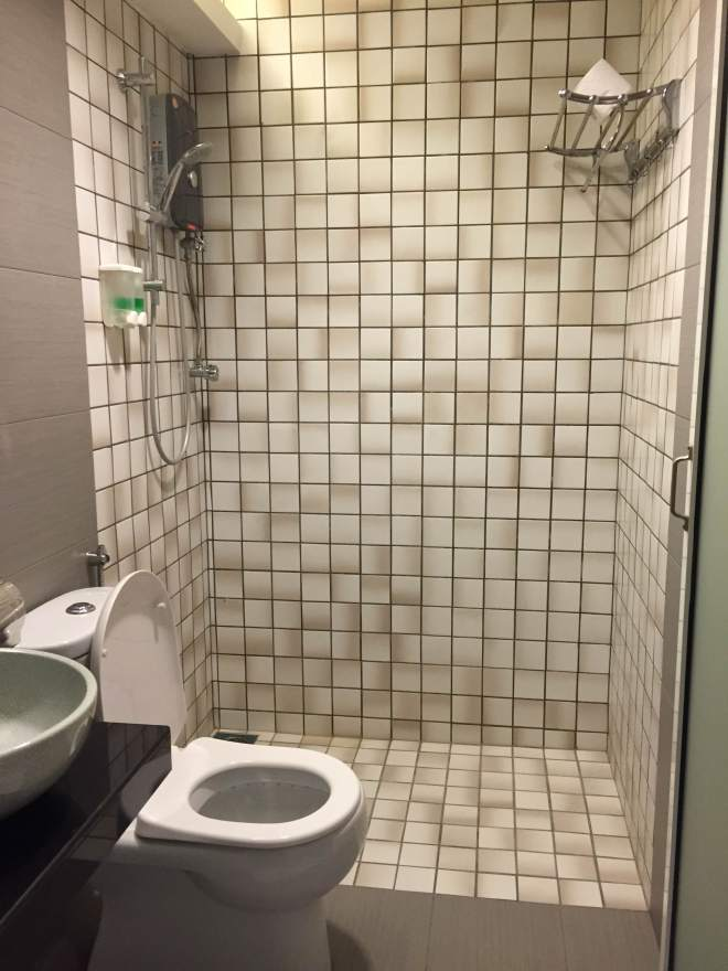 Tell me the toilet doesn't look like a showroom you'd find at Ikea