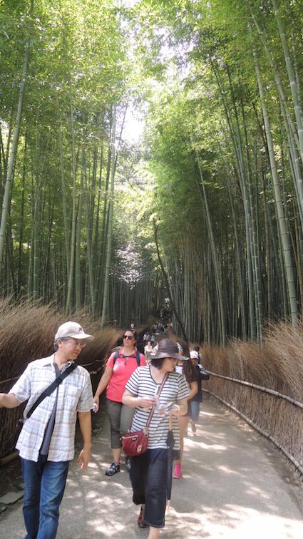 The famous Arashiyama Bamboo Grove
