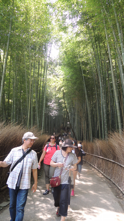 The famous Arashiyama Bamboo Grove