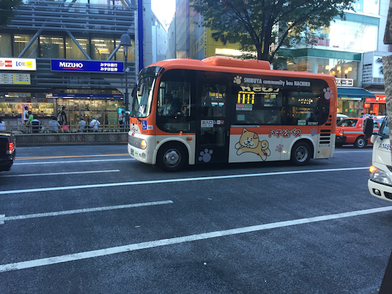 IMG_7967
